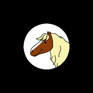 Annis Freund Pferd Mecki ist braun und die Mähne ist blond